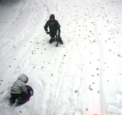 snowandleaves