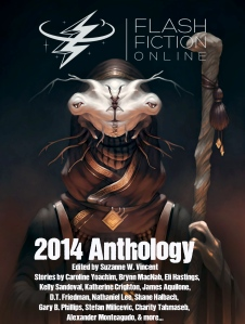 flash-fiction-online-2014-anthology-cover
