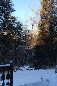 wintercold